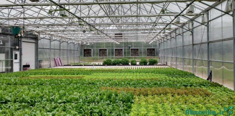 آبیاری گلخانههای وسیع